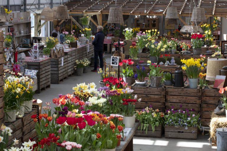 bloemenkas van de Tulperij
